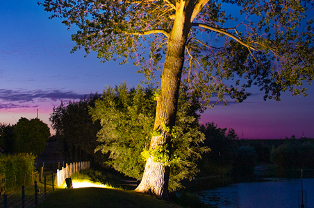 éclairage jardin avec projecteur