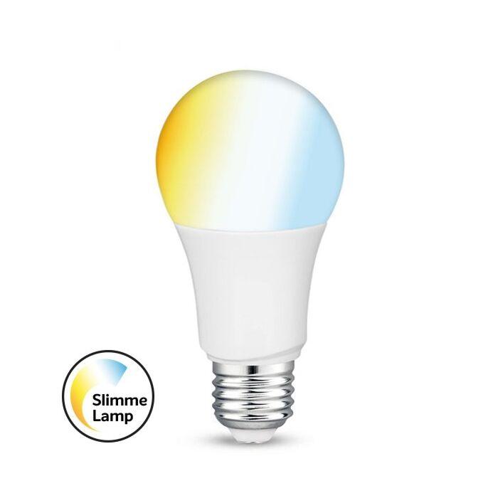 Ampoule LED Connectée E27 tint A60 9W 2700K dimmable