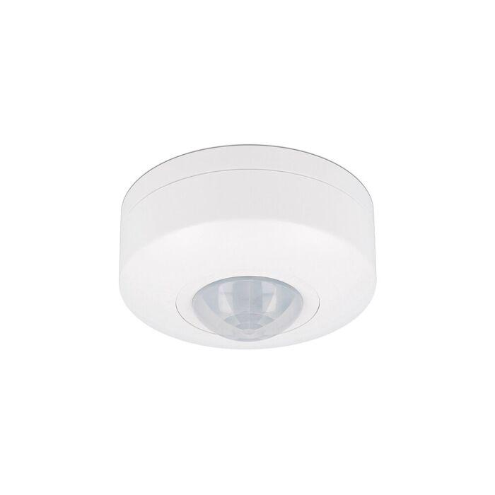 Détecteur de mouvement LED plafond saillie blanc 6m